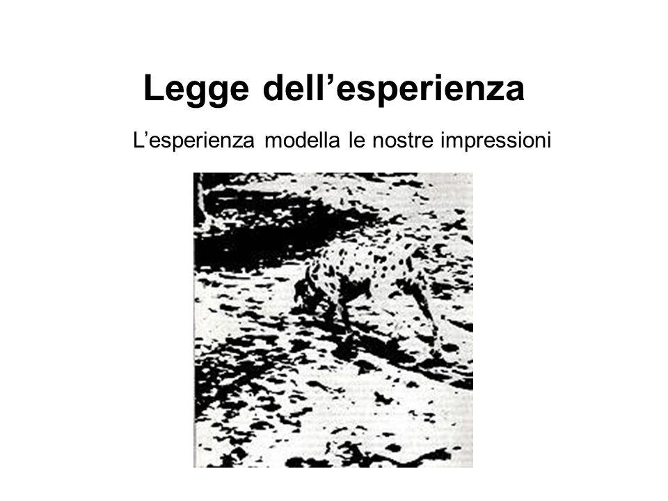 Legge dellesperienza Lesperienza modella le nostre impressioni