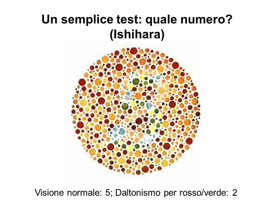 Un semplice test: quale numero? (Ishihara) Visione normale: 5; Daltonismo per rosso/verde: 2