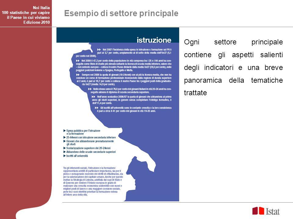 Esempio di settore principale Ogni settore principale contiene gli aspetti salienti degli indicatori e una breve panoramica della tematiche trattate N