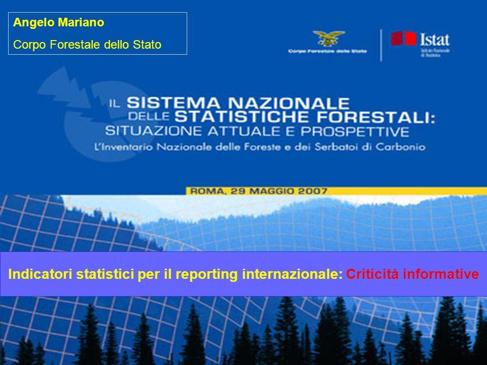 Indicatori statistici per il reporting internazionale: Criticità informative Angelo Mariano Corpo Forestale dello Stato