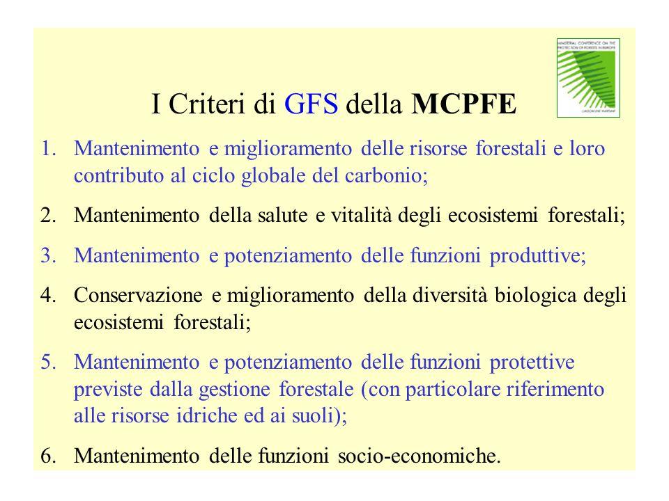 I Criteri di GFS della MCPFE 1.Mantenimento e miglioramento delle risorse forestali e loro contributo al ciclo globale del carbonio; 2.Mantenimento de