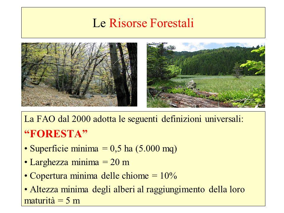 Le Risorse Forestali La FAO dal 2000 adotta le seguenti definizioni universali: FORESTA Superficie minima = 0,5 ha (5.000 mq) Larghezza minima = 20 m