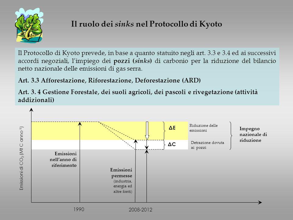 Emissioni permesse (industria, energia ed altre fonti) 1990 2008-2012 Emissioni nellanno di riferimento ΔEΔE ΔCΔC Detrazione dovuta ai pozzi Riduzione delle emissioni Emissioni di CO 2 (Mt C anno -1 ) Impegno nazionale di riduzione Il Protocollo di Kyoto prevede, in base a quanto statuito negli art.