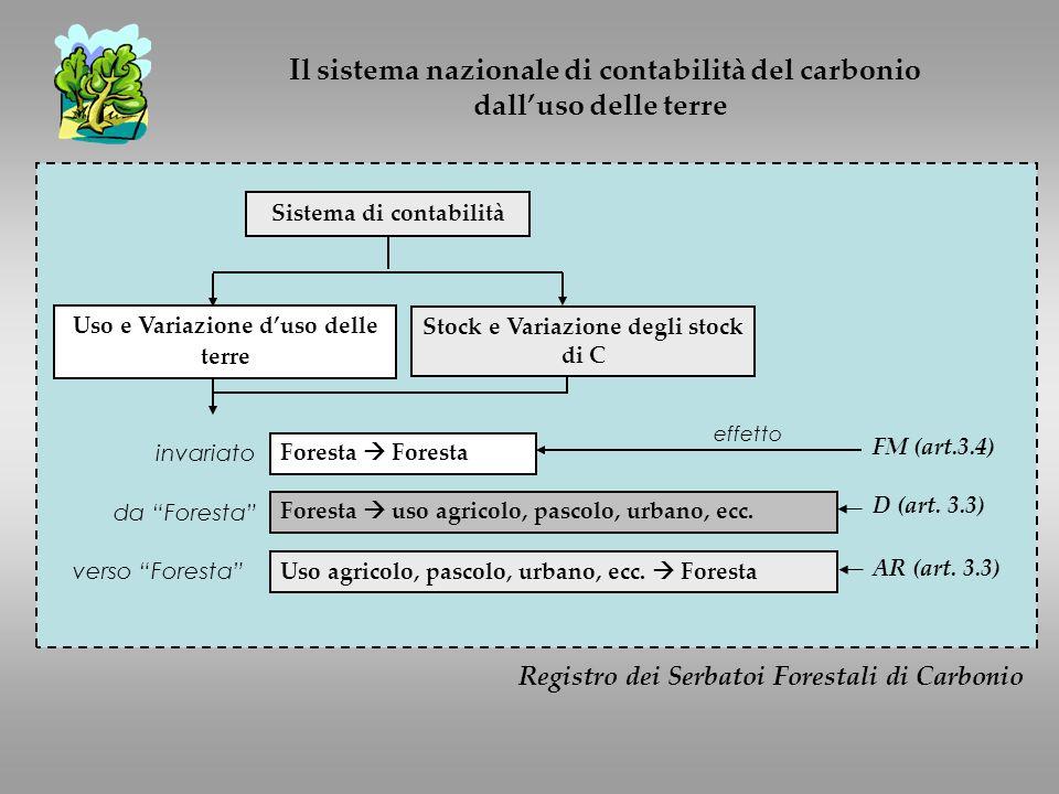 Il sistema nazionale di contabilità del carbonio dalluso delle terre Registro dei Serbatoi Forestali di Carbonio Sistema di contabilità Uso e Variazione duso delle terre Stock e Variazione degli stock di C Foresta Foresta uso agricolo, pascolo, urbano, ecc.