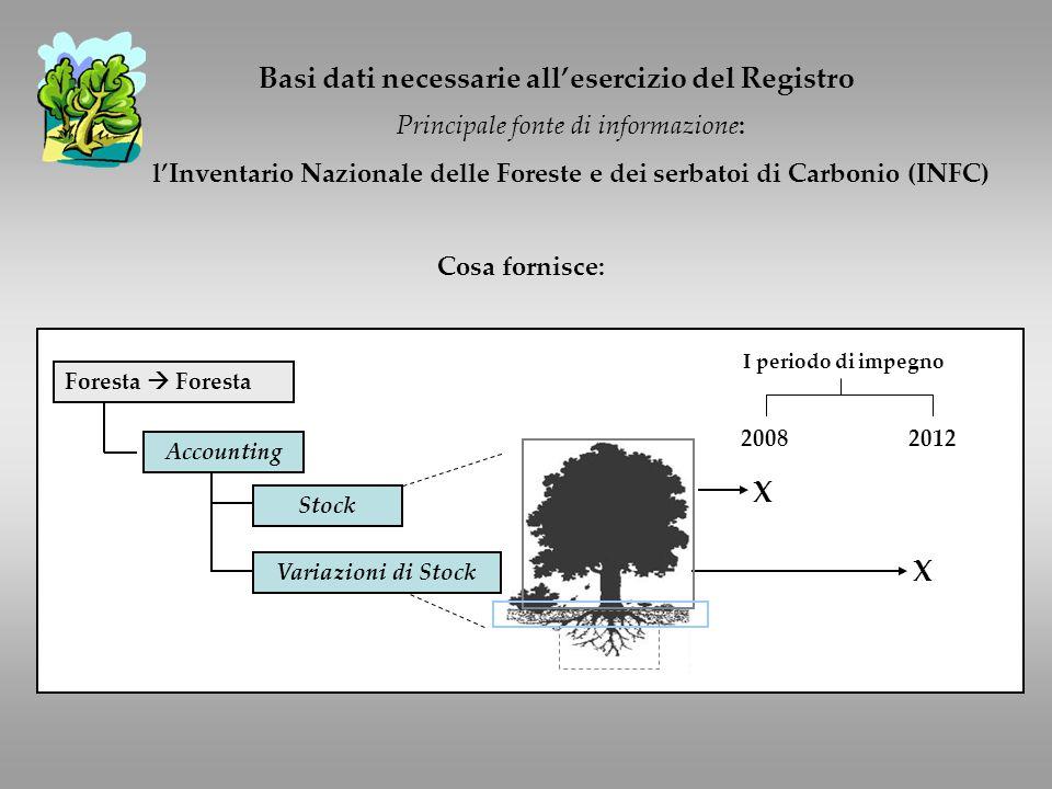 Basi dati necessarie allesercizio del Registro Principale fonte di informazione: lInventario Nazionale delle Foreste e dei serbatoi di Carbonio (INFC) Cosa fornisce: Foresta Accounting 20082012 I periodo di impegno X X Stock Variazioni di Stock