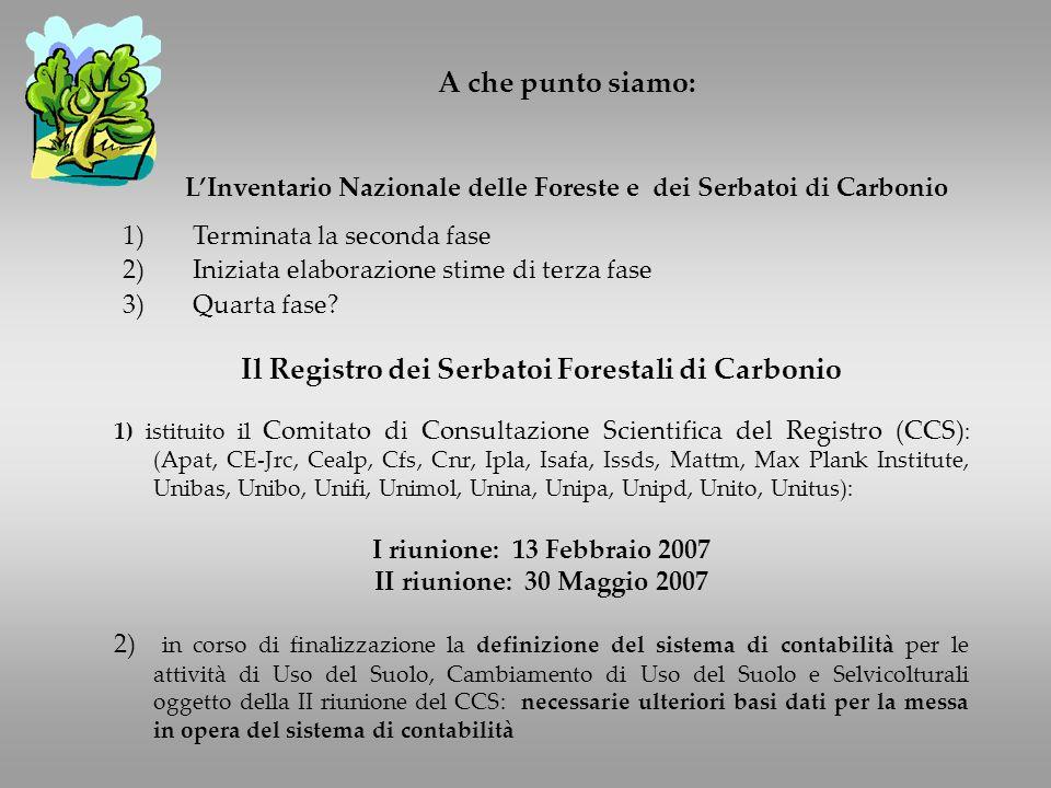 A che punto siamo: LInventario Nazionale delle Foreste e dei Serbatoi di Carbonio 1)Terminata la seconda fase 2)Iniziata elaborazione stime di terza fase 3)Quarta fase.