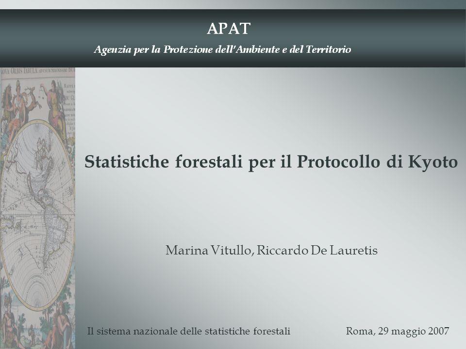 Statistiche forestali per il Protocollo di Kyoto Il sistema nazionale delle statistiche forestali Roma, 29 maggio 2007 Marina Vitullo, Riccardo De Lau