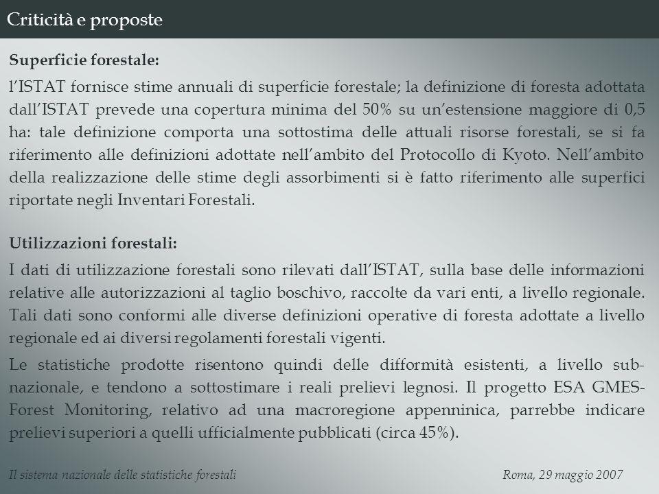 Criticità e proposte Superficie forestale: lISTAT fornisce stime annuali di superficie forestale; la definizione di foresta adottata dallISTAT prevede