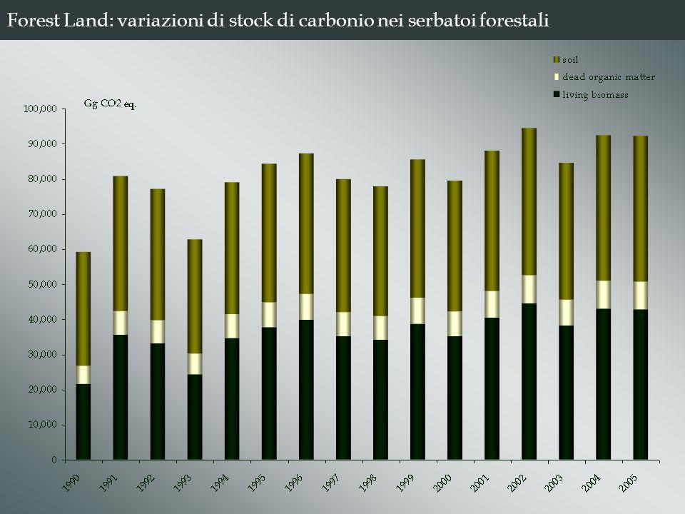 Forest Land: variazioni di stock di carbonio nei serbatoi forestali