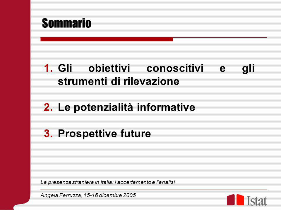 Sommario 1.Gli obiettivi conoscitivi e gli strumenti di rilevazione 2.Le potenzialità informative 3.Prospettive future La presenza straniera in Italia