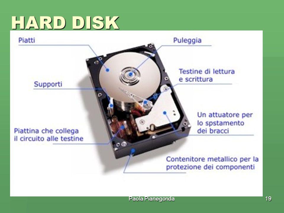 Paola Pianegonda19 HARD DISK È una pila coassiale di dischi metallici dotata di testina di lettura e scrittura che permette la memorizzazione e il man