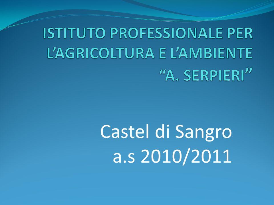 Castel di Sangro a.s 2010/2011