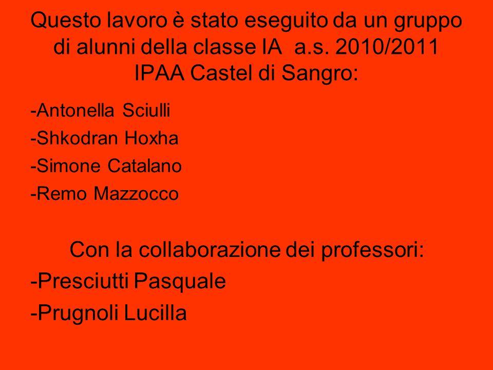 Questo lavoro è stato eseguito da un gruppo di alunni della classe IA a.s. 2010/2011 IPAA Castel di Sangro: -Antonella Sciulli -Shkodran Hoxha -Simone