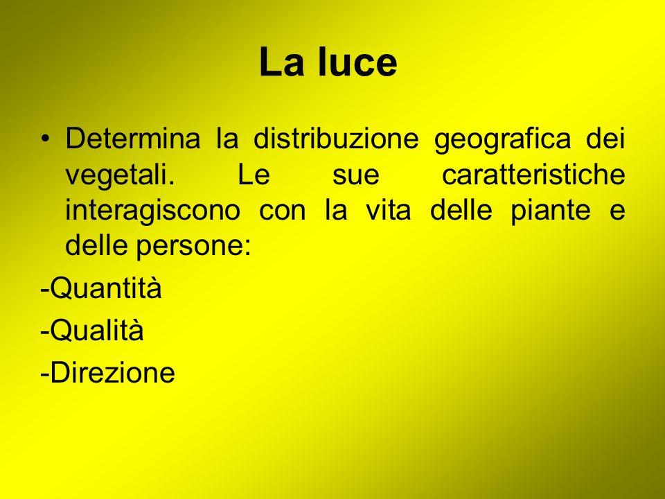 La luce Determina la distribuzione geografica dei vegetali. Le sue caratteristiche interagiscono con la vita delle piante e delle persone: -Quantità -