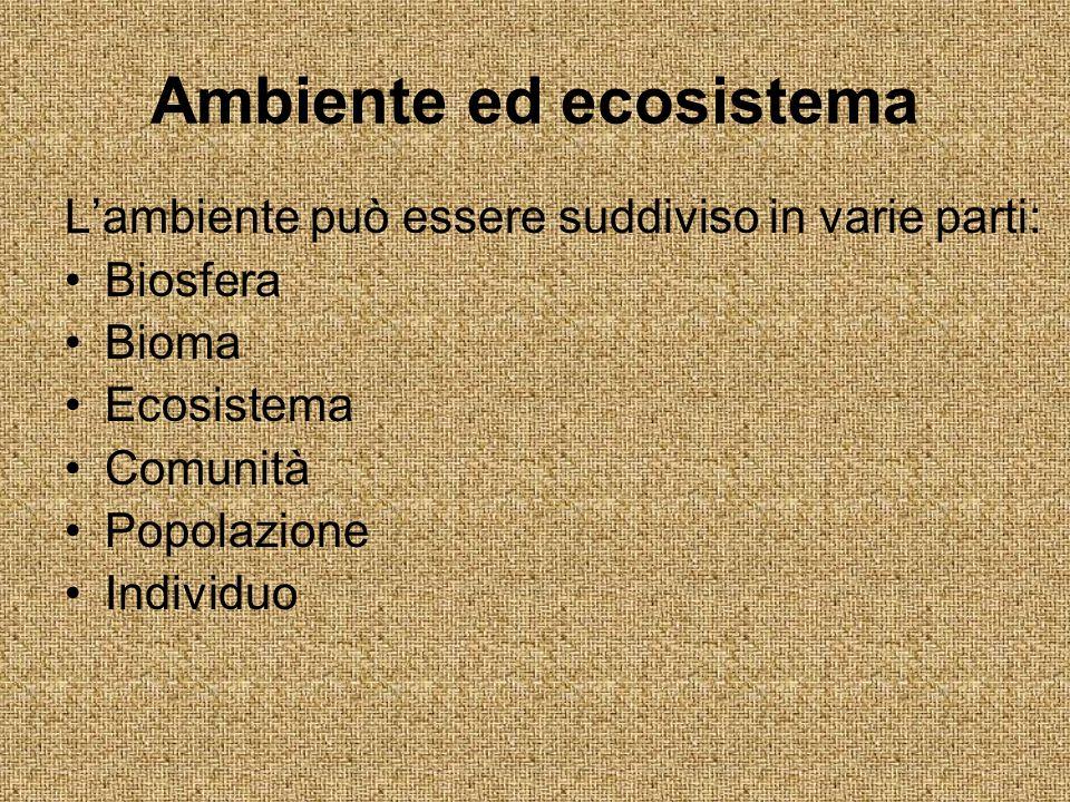 Ambiente ed ecosistema Lambiente può essere suddiviso in varie parti: Biosfera Bioma Ecosistema Comunità Popolazione Individuo