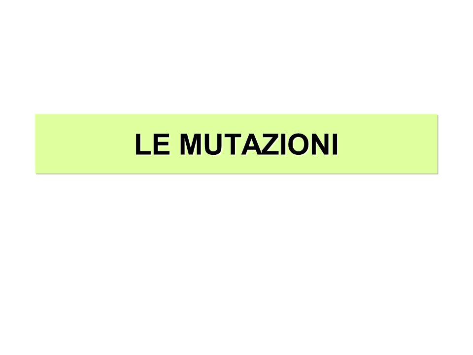 LE MUTAZIONI