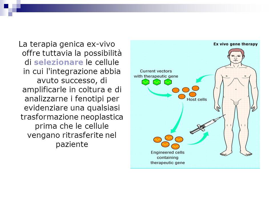 La terapia genica ex-vivo offre tuttavia la possibilità di selezionare le cellule in cui l'integrazione abbia avuto successo, di amplificarle in coltu
