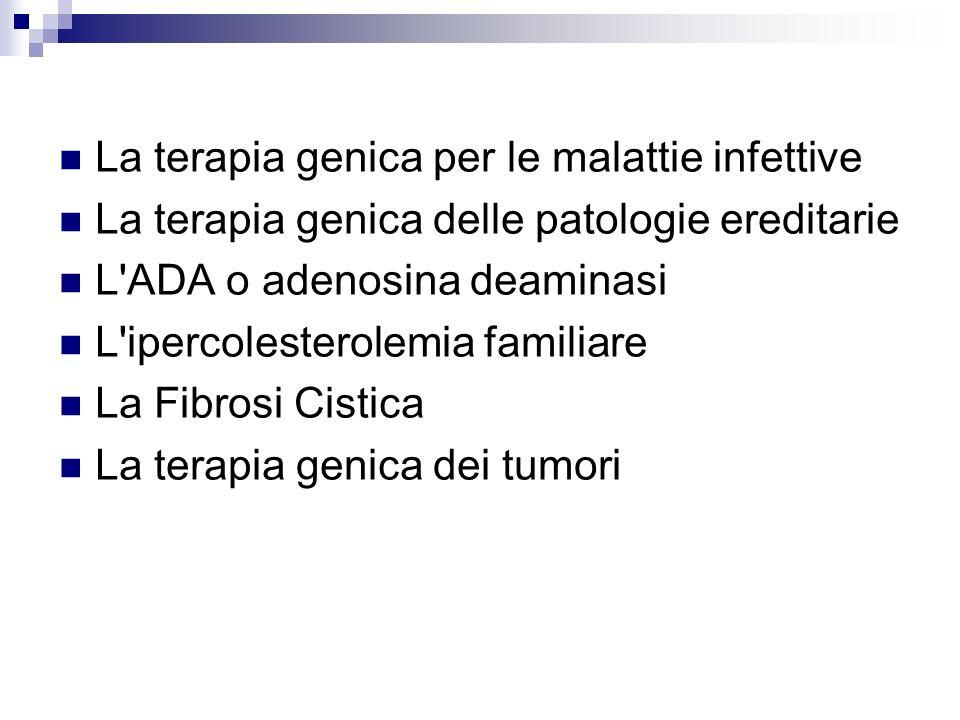 La terapia genica per le malattie infettive La terapia genica delle patologie ereditarie L'ADA o adenosina deaminasi L'ipercolesterolemia familiare La