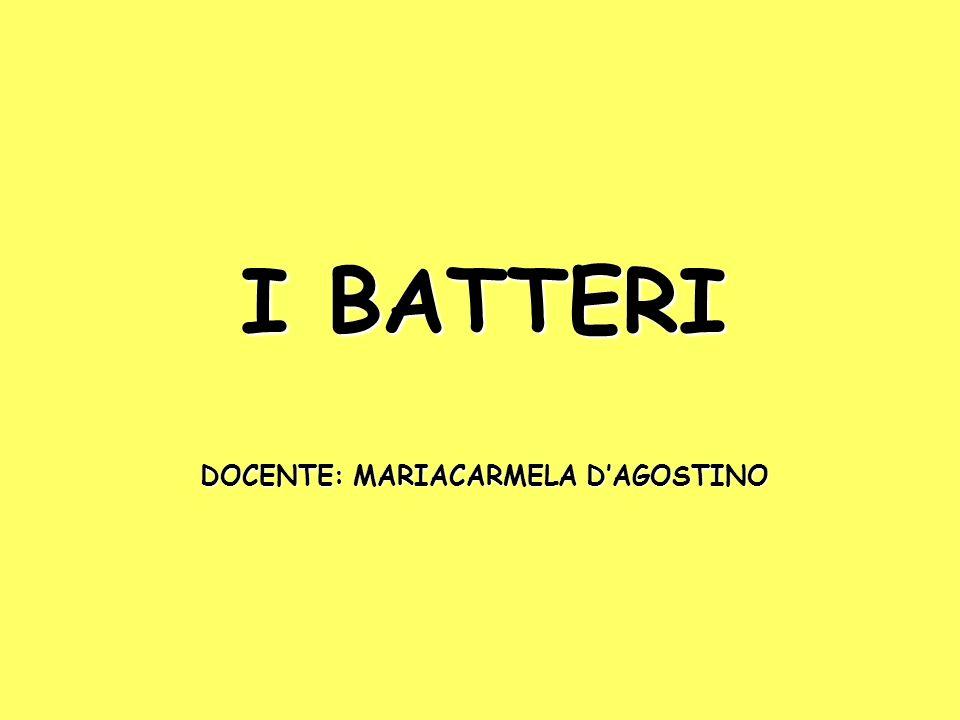 I BATTERI DOCENTE: MARIACARMELA DAGOSTINO
