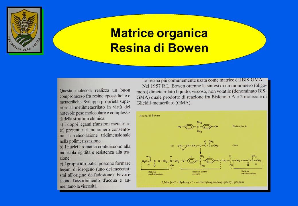 Matrice organica Resina di Bowen