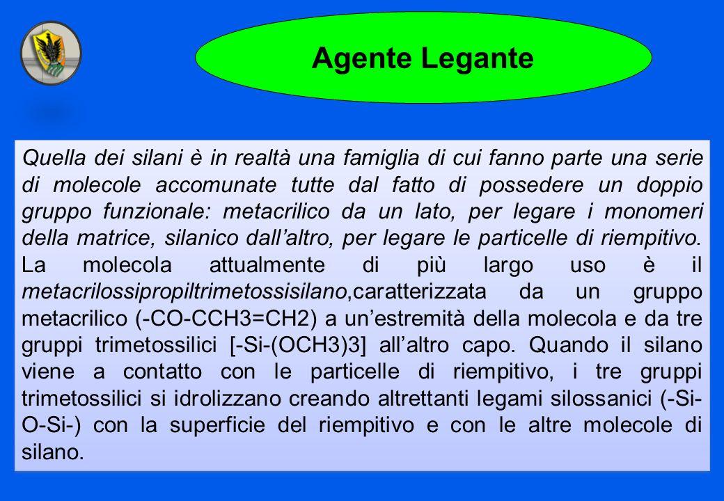 Agente Legante Quella dei silani è in realtà una famiglia di cui fanno parte una serie di molecole accomunate tutte dal fatto di possedere un doppio g