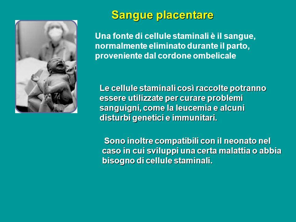 Sangue placentare Le cellule staminali così raccolte potranno essere utilizzate per curare problemi sanguigni, come la leucemia e alcuni disturbi gene