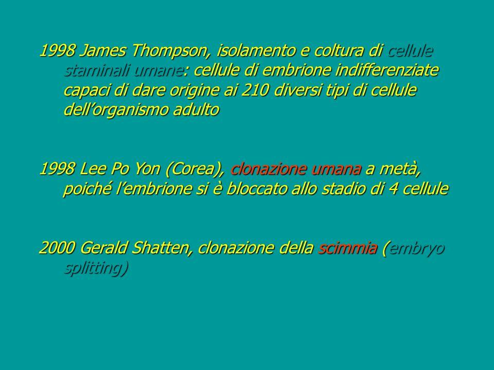 1998 James Thompson, isolamento e coltura di cellule staminali umane: cellule di embrione indifferenziate capaci di dare origine ai 210 diversi tipi d