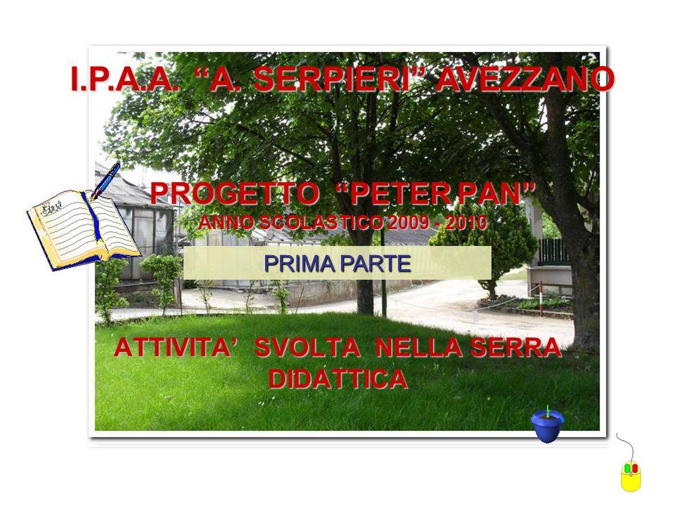 PROGETTO PETER PAN ANNO SCOLASTICO 2009 - 2010 ATTIVITA SVOLTA NELLA SERRA DIDATTICA I.P.A.A.