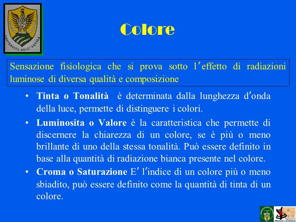 Tinta o Tonalità è determinata dalla lunghezza donda della luce, permette di distinguere i colori. Luminosita o Valore è la caratteristica che permett