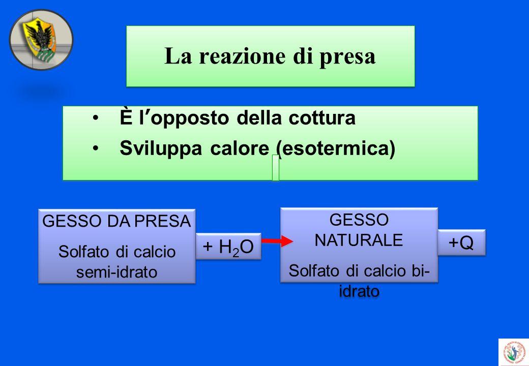 La reazione di presa È lopposto della cottura Sviluppa calore (esotermica) È lopposto della cottura Sviluppa calore (esotermica) GESSO NATURALE Solfat
