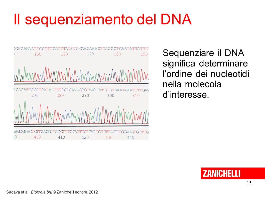 15 Sadava et al. Biologia.blu © Zanichelli editore, 2012 Il sequenziamento del DNA Sequenziare il DNA significa determinare lordine dei nucleotidi nel