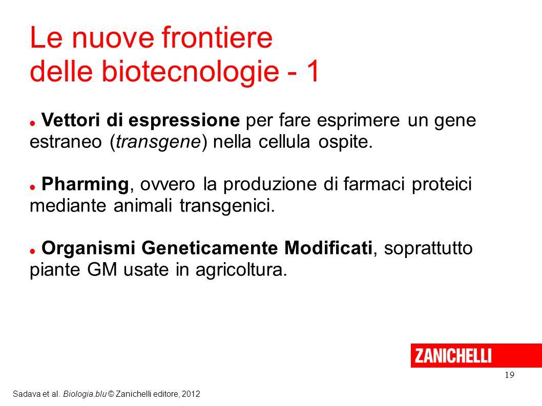 19 Sadava et al. Biologia.blu © Zanichelli editore, 2012 Vettori di espressione per fare esprimere un gene estraneo (transgene) nella cellula ospite.