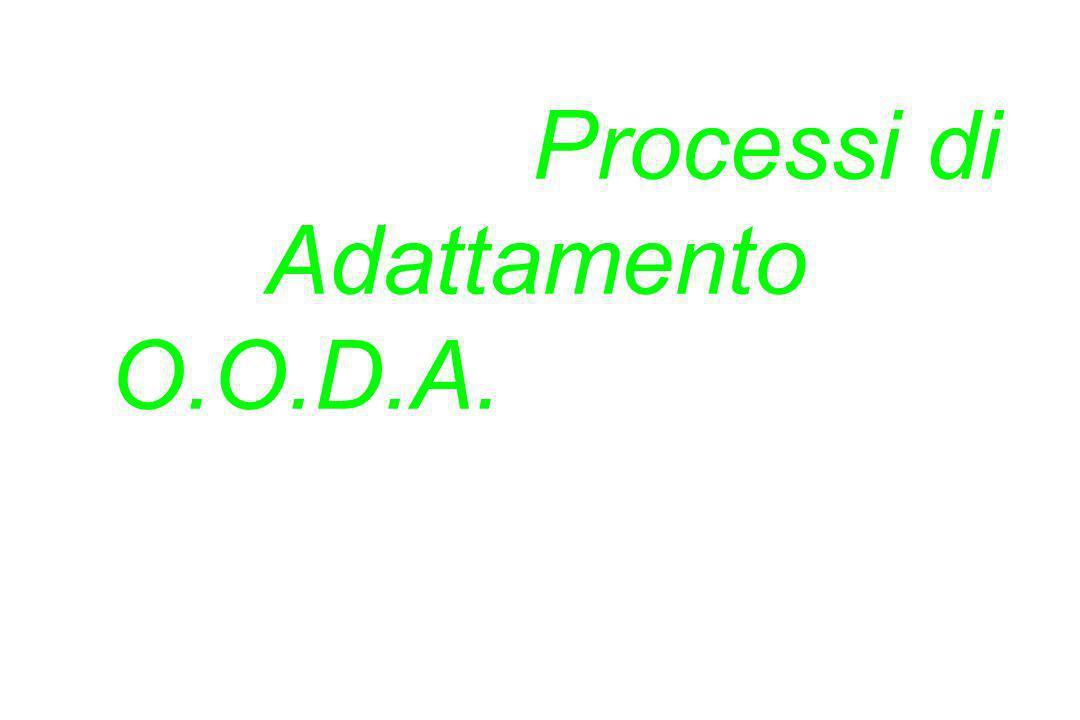 La persona che possiede i Processi di Adattamento O.O.D.A.* più veloci vince! *Osserva. Orientati. Decidi. Agisci. / Col. John Boyd