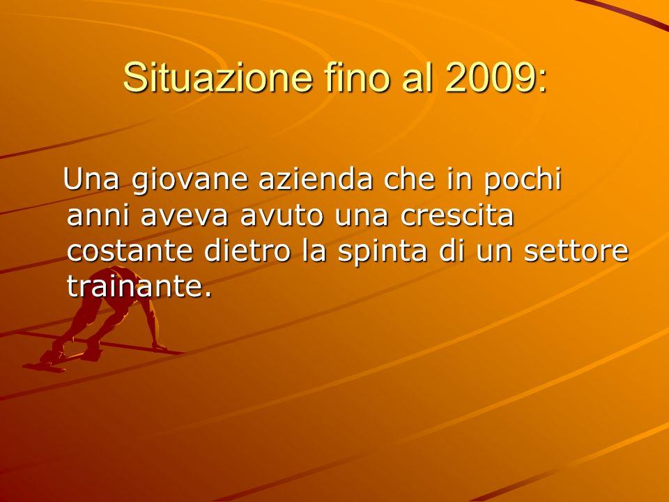 Situazione fino al 2009: Una giovane azienda che in pochi anni aveva avuto una crescita costante dietro la spinta di un settore trainante.