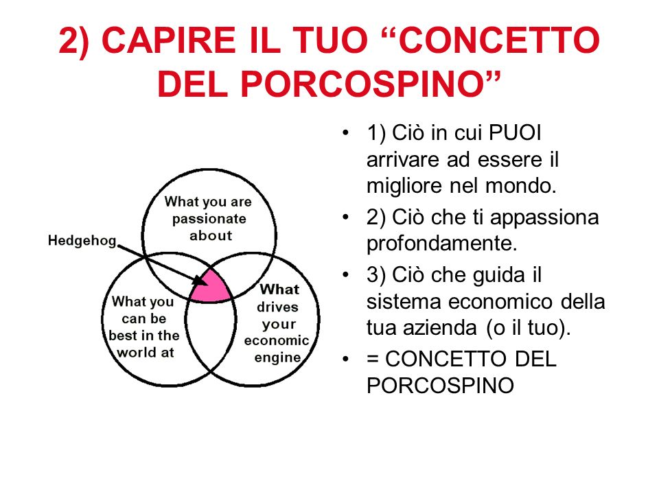 2) CAPIRE IL TUO CONCETTO DEL PORCOSPINO 1) Ciò in cui PUOI arrivare ad essere il migliore nel mondo.