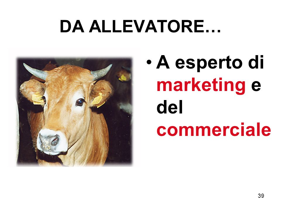 39 DA ALLEVATORE… A esperto di marketing e del commerciale