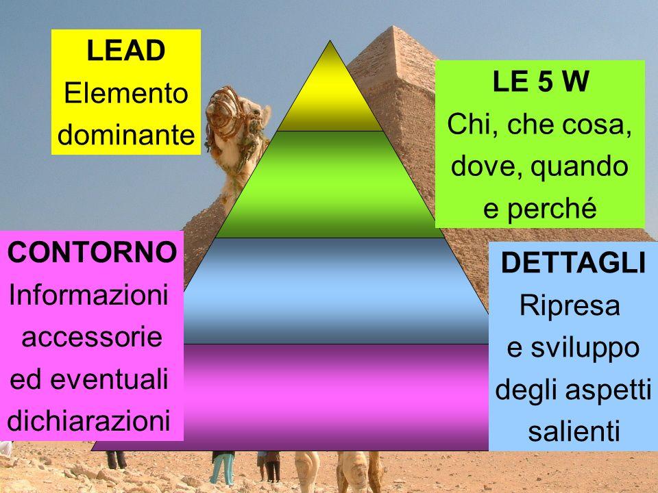 LEAD Elemento dominante LE 5 W Chi, che cosa, dove, quando e perché CONTORNO Informazioni accessorie ed eventuali dichiarazioni DETTAGLI Ripresa e sviluppo degli aspetti salienti