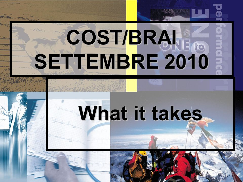 1 COST/BRAI SETTEMBRE 2010 What it takes