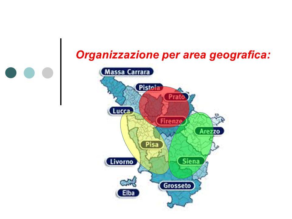 Organizzazione per area geografica: