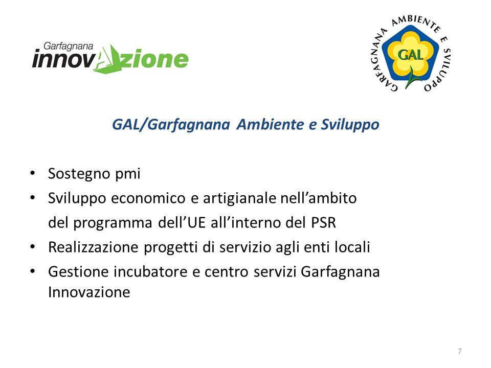 GAL/Garfagnana Ambiente e Sviluppo Sostegno pmi Sviluppo economico e artigianale nellambito del programma dellUE allinterno del PSR Realizzazione prog