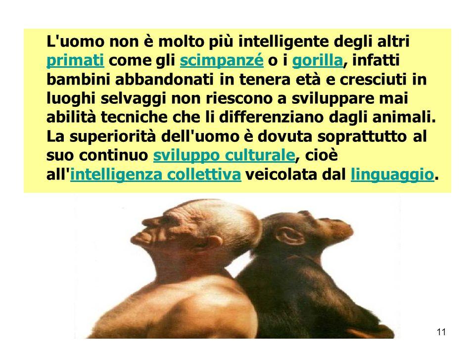 MARIO FRACCARO11 L'uomo non è molto più intelligente degli altri primati come gli scimpanzé o i gorilla, infatti bambini abbandonati in tenera età e c