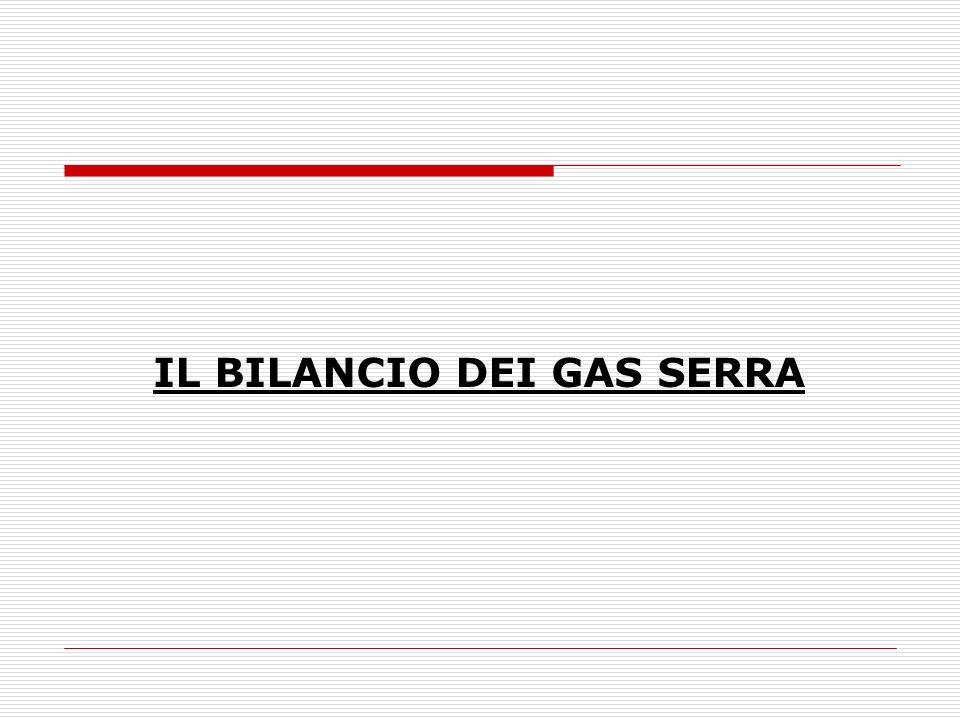 IL BILANCIO DEI GAS SERRA