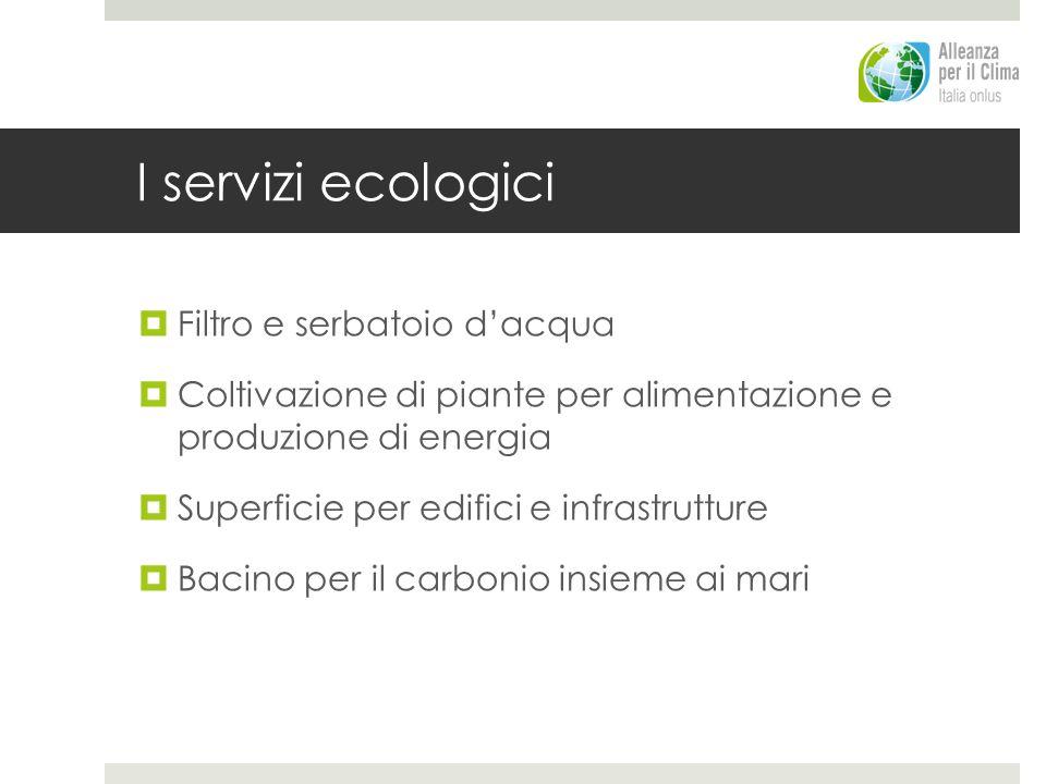 I servizi ecologici Filtro e serbatoio dacqua Coltivazione di piante per alimentazione e produzione di energia Superficie per edifici e infrastrutture Bacino per il carbonio insieme ai mari