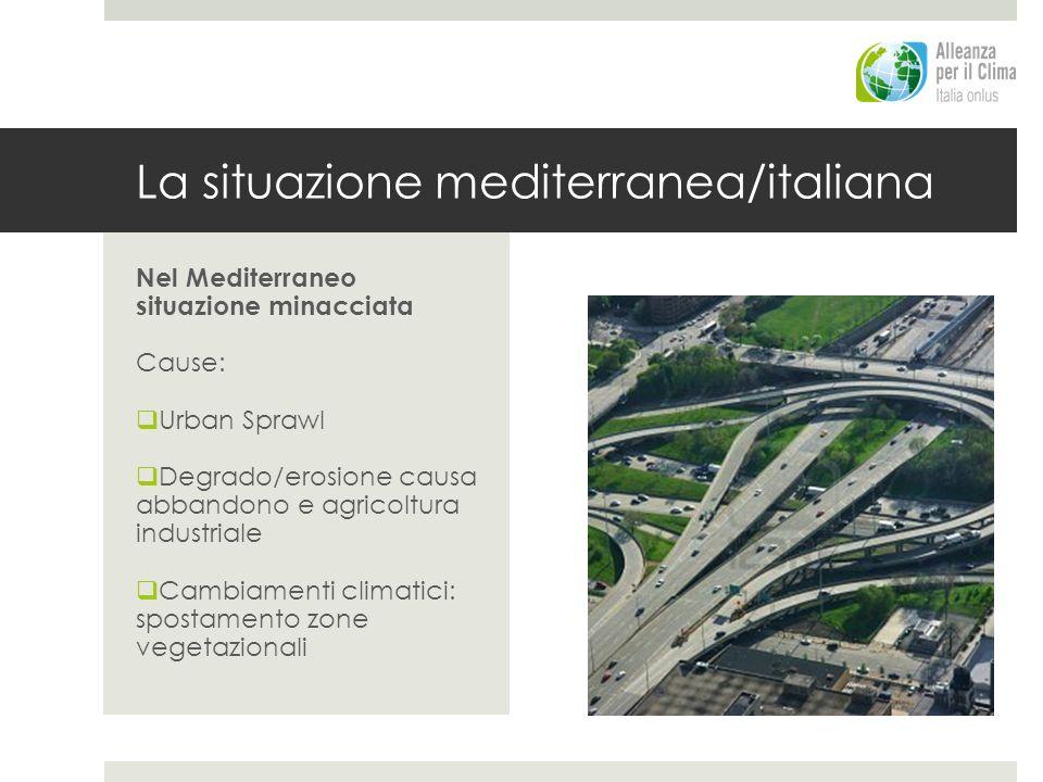 La situazione mediterranea/italiana Nel Mediterraneo situazione minacciata Cause: Urban Sprawl Degrado/erosione causa abbandono e agricoltura industri
