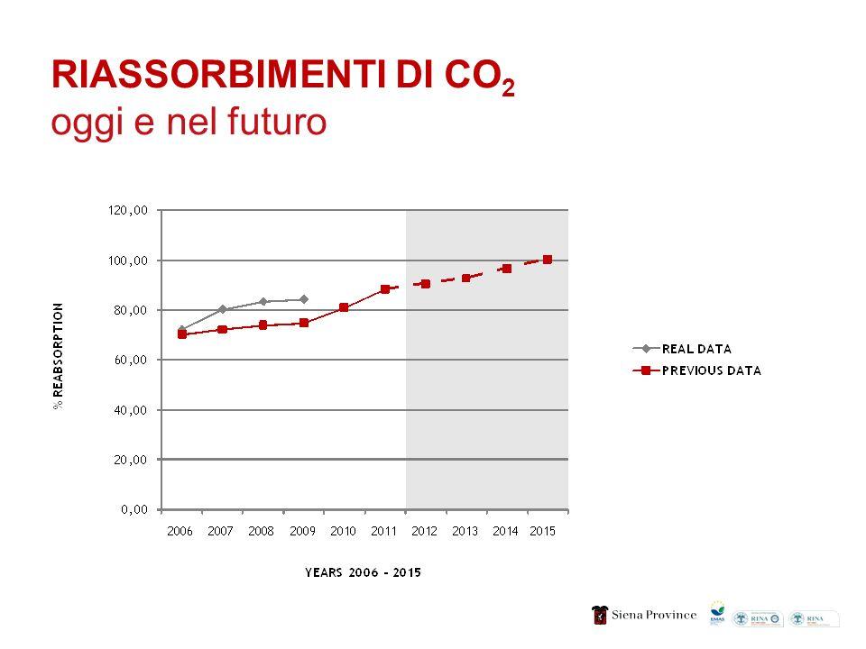 RIASSORBIMENTI DI CO 2 oggi e nel futuro