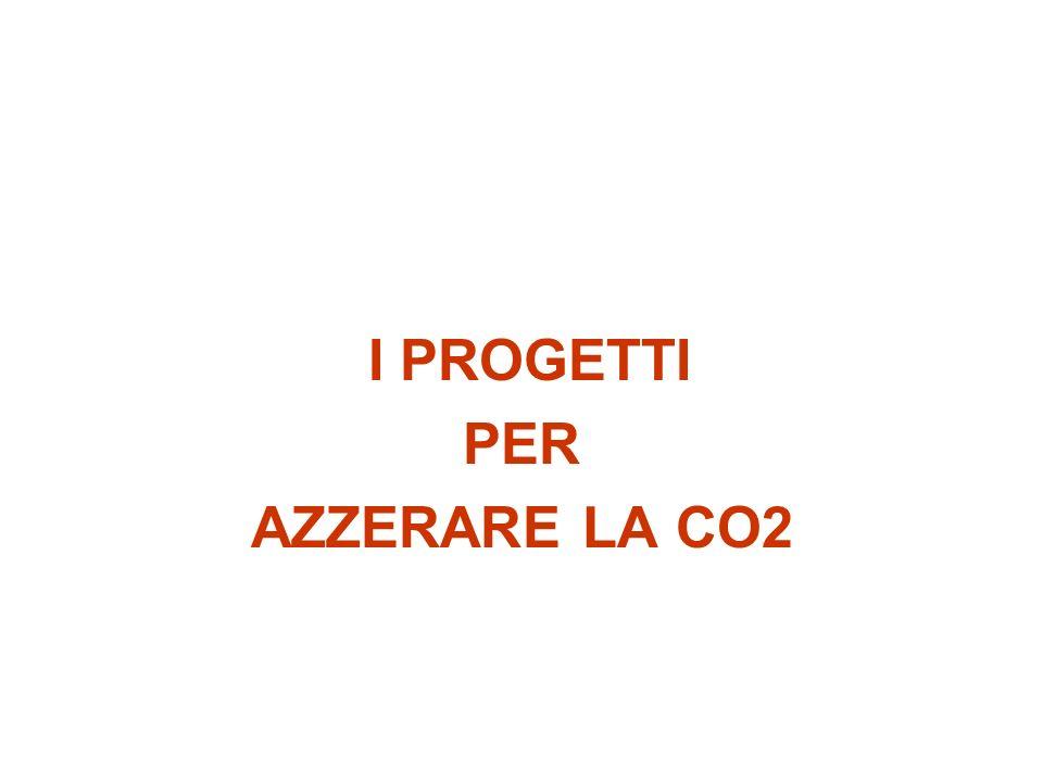I PROGETTI PER AZZERARE LA CO2