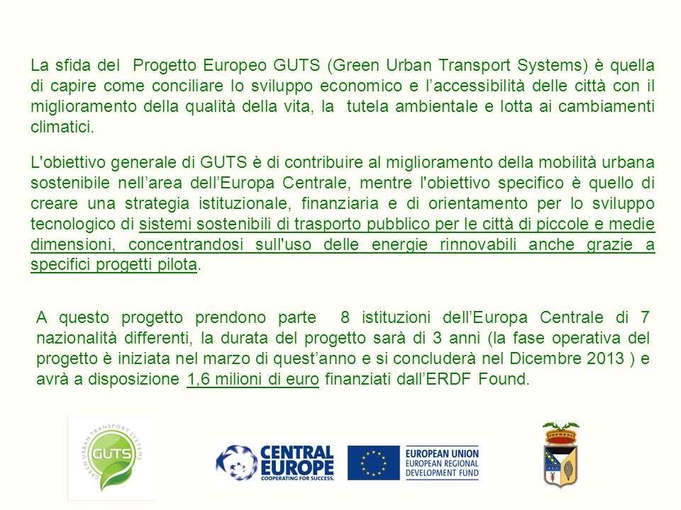 7 Regional Strategic Platforms 7 Local / Regional Analyses Expert Panel Public Transport Resource Centre (PTRC) 5 Pilot Studies Compiled Pilot Report 1 Master Study on Governance and 1 on Financial & technical Feasibility Transnational Strategy on Clean PT Systems 5 Local Action Plans (Sopron, Ferrara, Velenje, Humenne, Karlovy Vary) Baseline study Pilot Preparatory Study