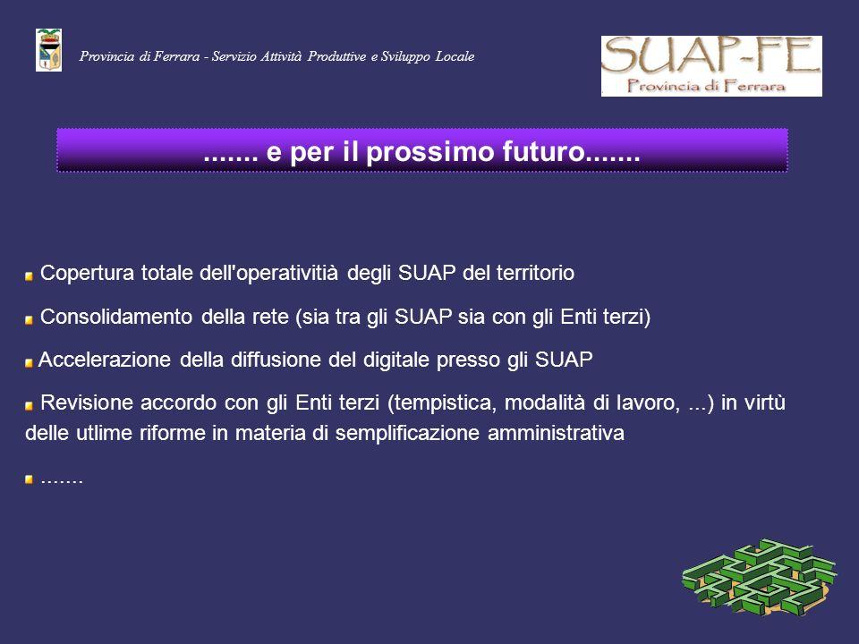 Provincia di Ferrara - Servizio Attività Produttive e Sviluppo Locale....... e per il prossimo futuro....... Copertura totale dell'operativitià degli