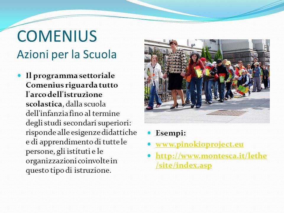 COMENIUS Azioni per la Scuola Il programma settoriale Comenius riguarda tutto l arco dell istruzione scolastica, dalla scuola dell infanzia fino al termine degli studi secondari superiori: risponde alle esigenze didattiche e di apprendimento di tutte le persone, gli istituti e le organizzazioni coinvolte in questo tipo di istruzione.