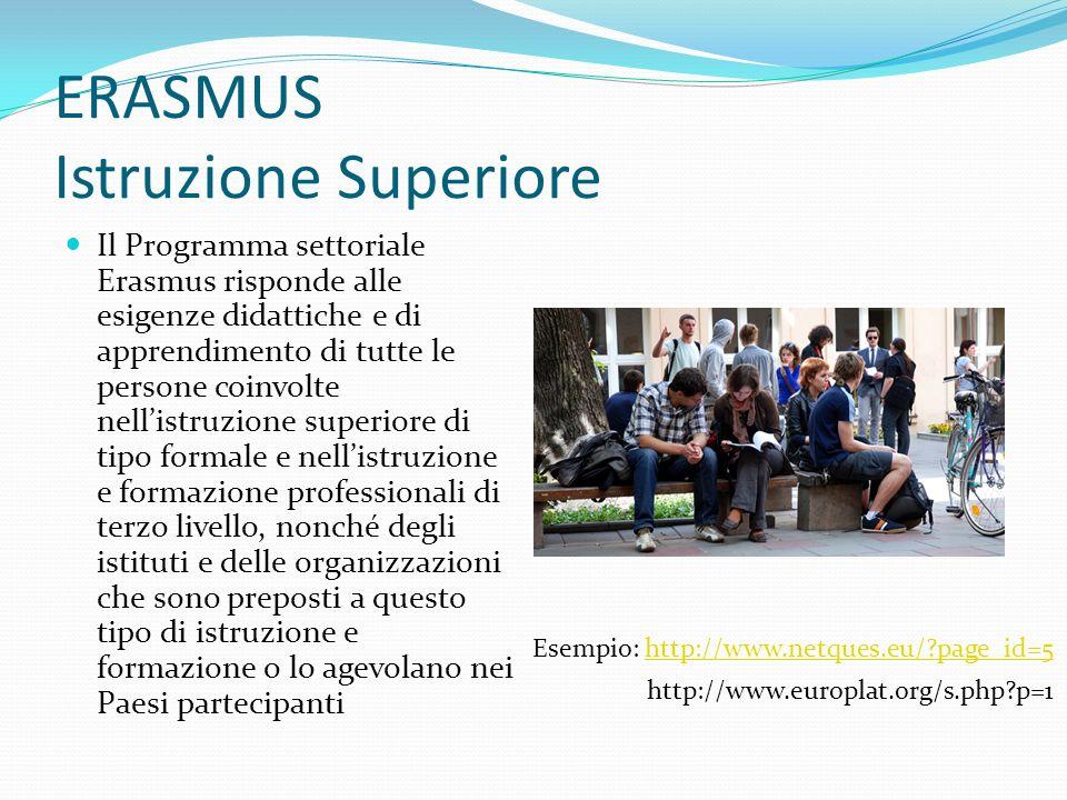 ERASMUS Istruzione Superiore Il Programma settoriale Erasmus risponde alle esigenze didattiche e di apprendimento di tutte le persone coinvolte nellistruzione superiore di tipo formale e nellistruzione e formazione professionali di terzo livello, nonché degli istituti e delle organizzazioni che sono preposti a questo tipo di istruzione e formazione o lo agevolano nei Paesi partecipanti Esempio: http://www.netques.eu/?page_id=5http://www.netques.eu/?page_id=5 http://www.europlat.org/s.php?p=1